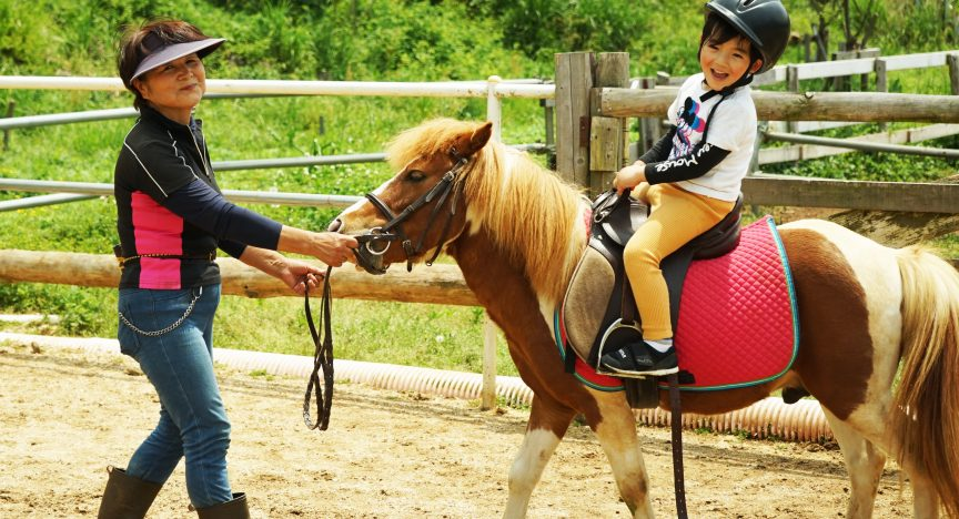 We are making a horseback riding & pizza baking experience program
